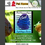 IL CAEB AL PET HOME 2015